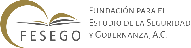 Fundación para el Estudio de la Seguridad y Gobernanza